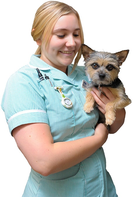 Spinney Lodge Veterinary Hospital