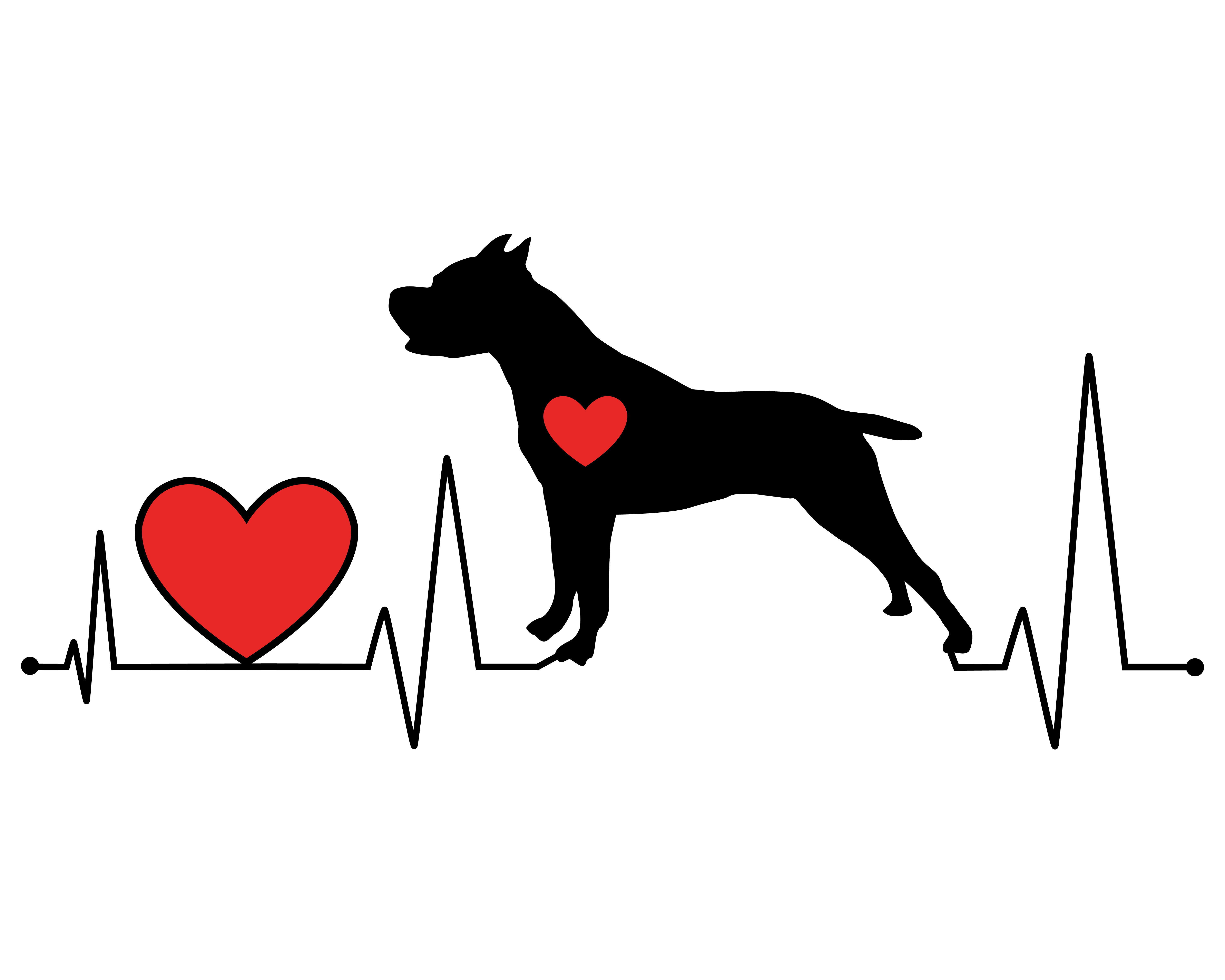 Dog Cardiology Understanding Canine Heart Disease