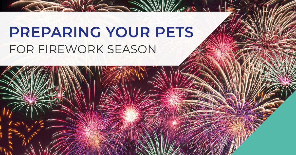 Fireworks Season Poster